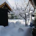 Winterimpressionen in den Pünten