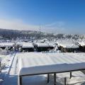 Winterimpressionen im Rosenberg